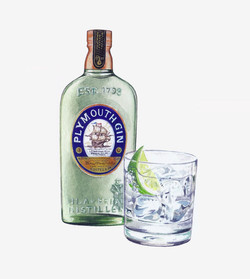 Plymouth Gin Artwork 1