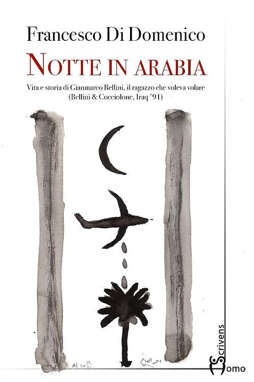Notte in Arabia - Francesco Di Domenico