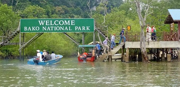 [EXCLUSIVE] Bako National Park & Muara Tebas Day Trip