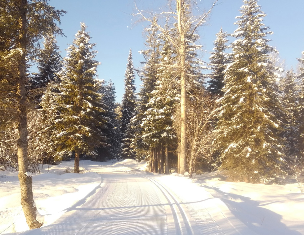 Dog-Creek-Lodge_Homepage-Slide23.jpg