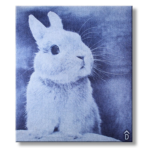 Canvas Bunny Denim by DecoNIM
