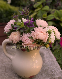 Chinese aster bouquet