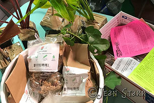 plant order2001.jpg