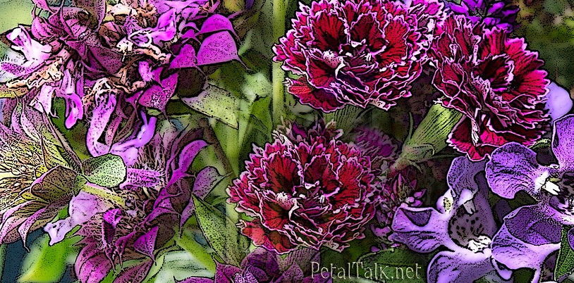 PEbouquet7302_edited_edited.jpg