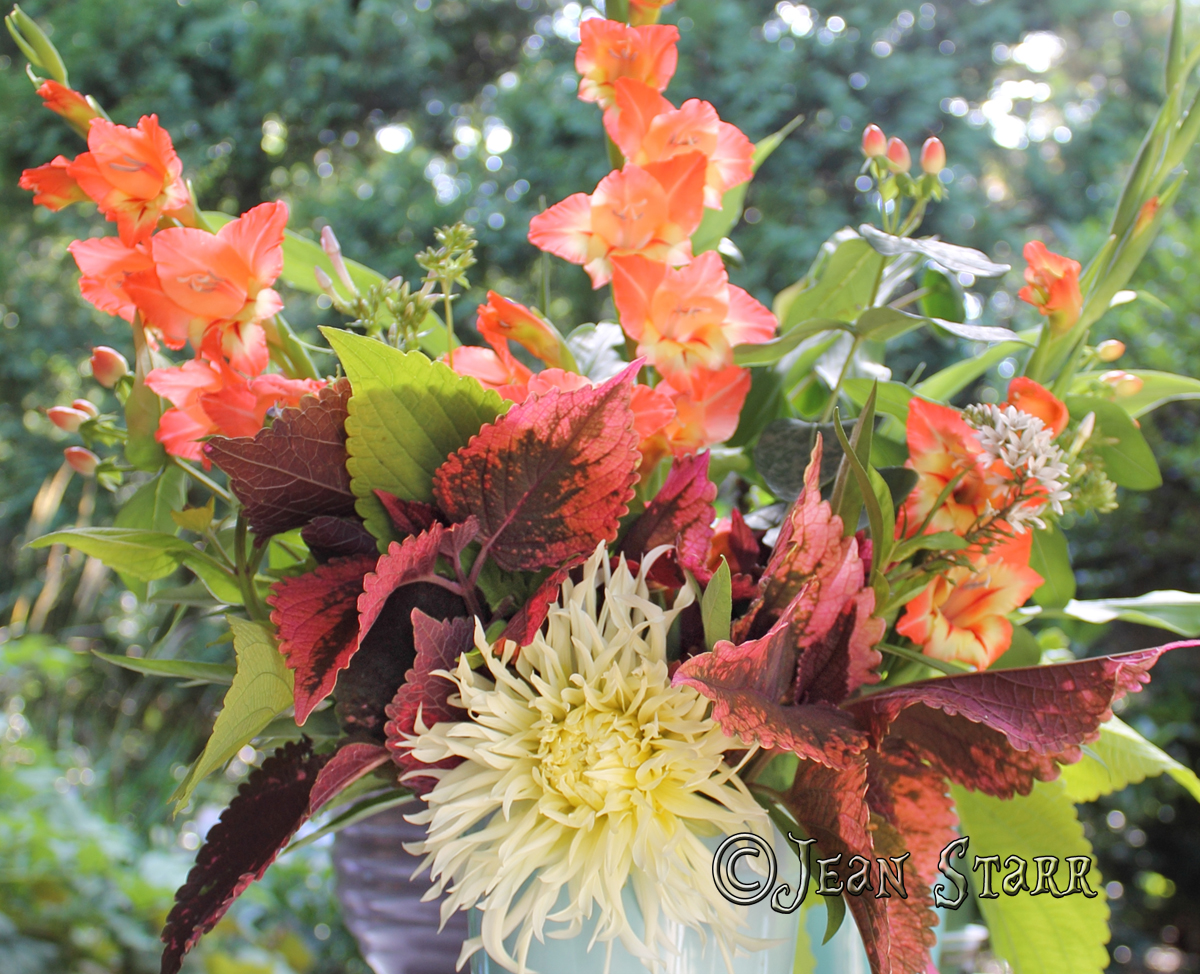 Dahlia & Glad Bouquet