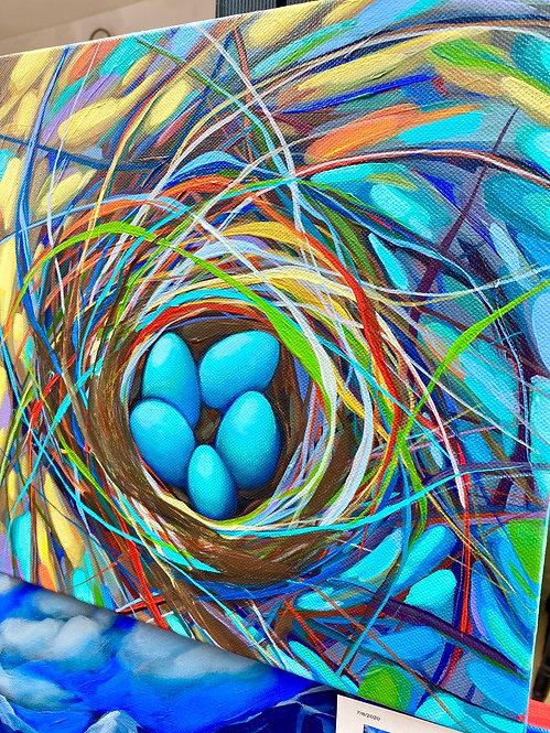 Nest 144