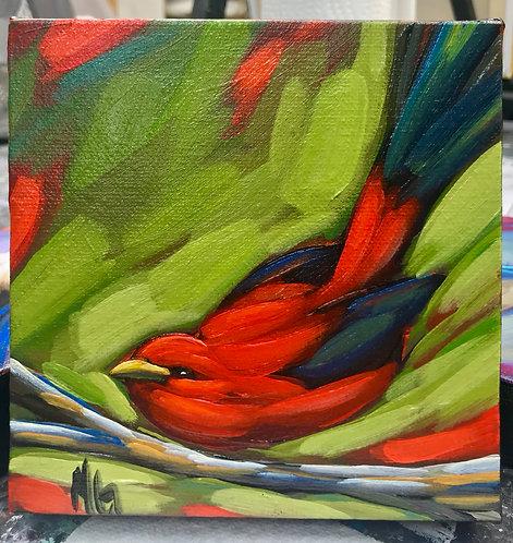 Bird 113