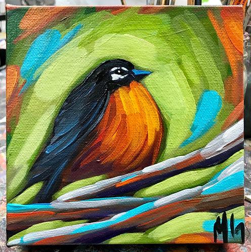 Bird 102