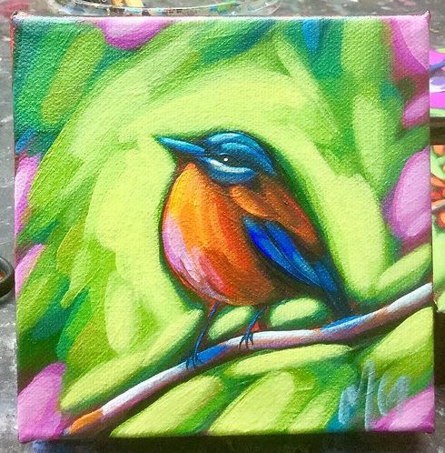 Bird 80