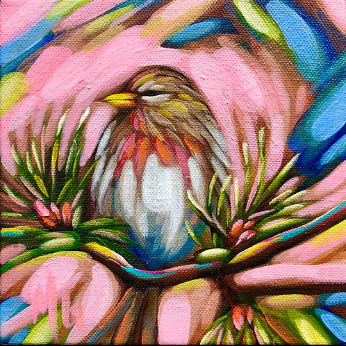 bird 51 6x6inches