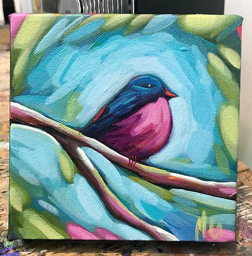 Bird 84