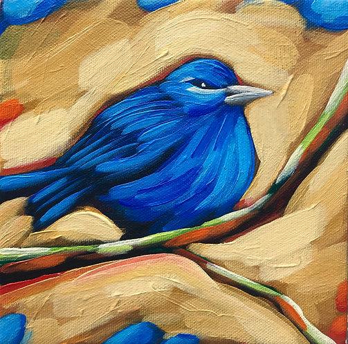 Bird 200