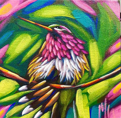 bird 50 6x6inches