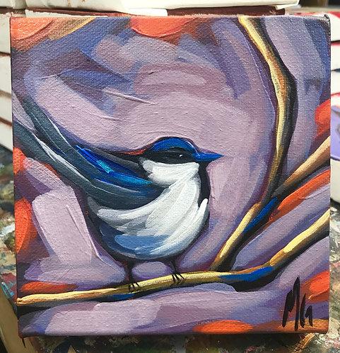 Bird 116