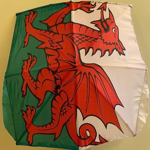 Red Dragon Fabric Flag Kite