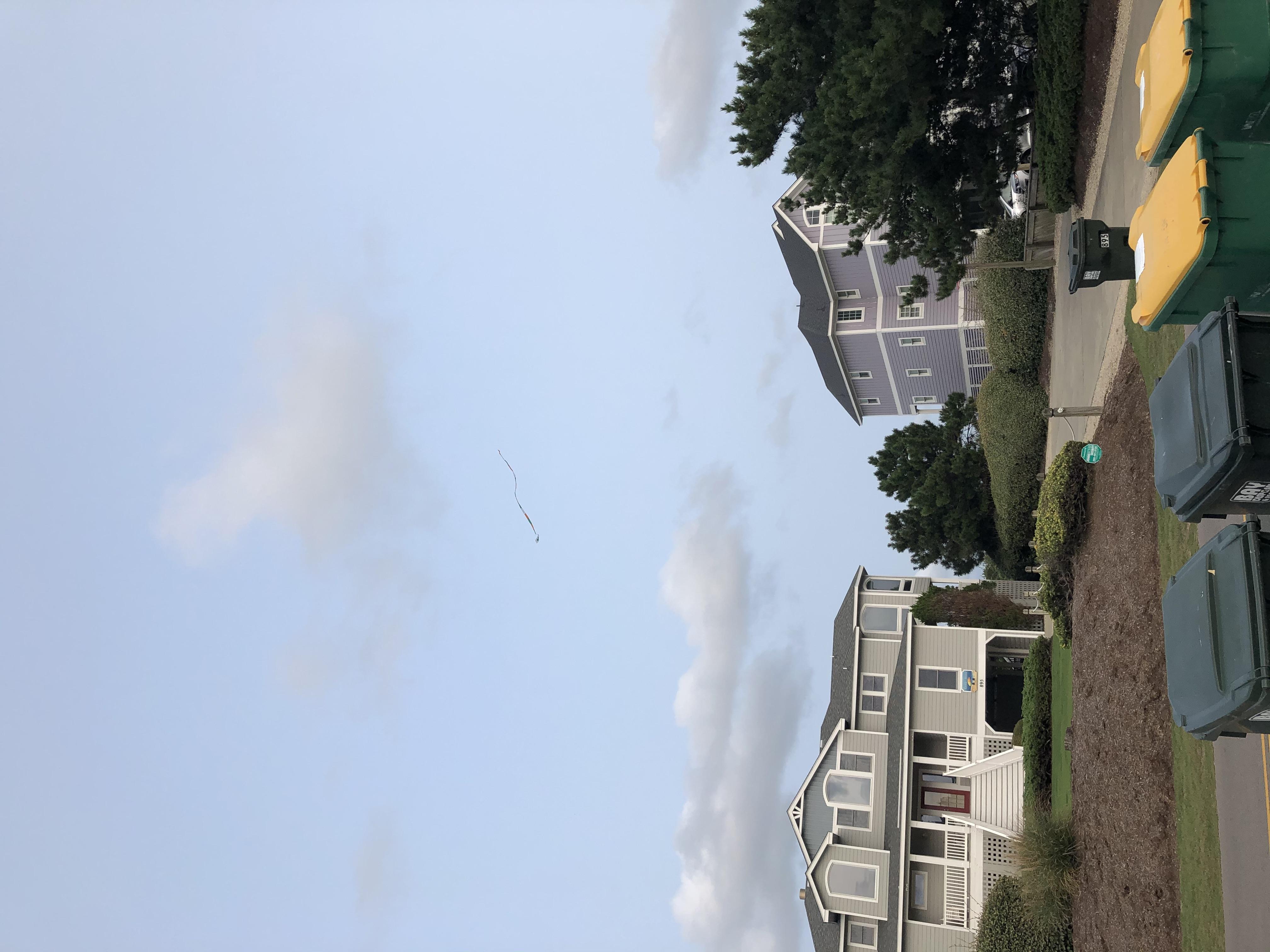 Flyringokite beach2.JPG