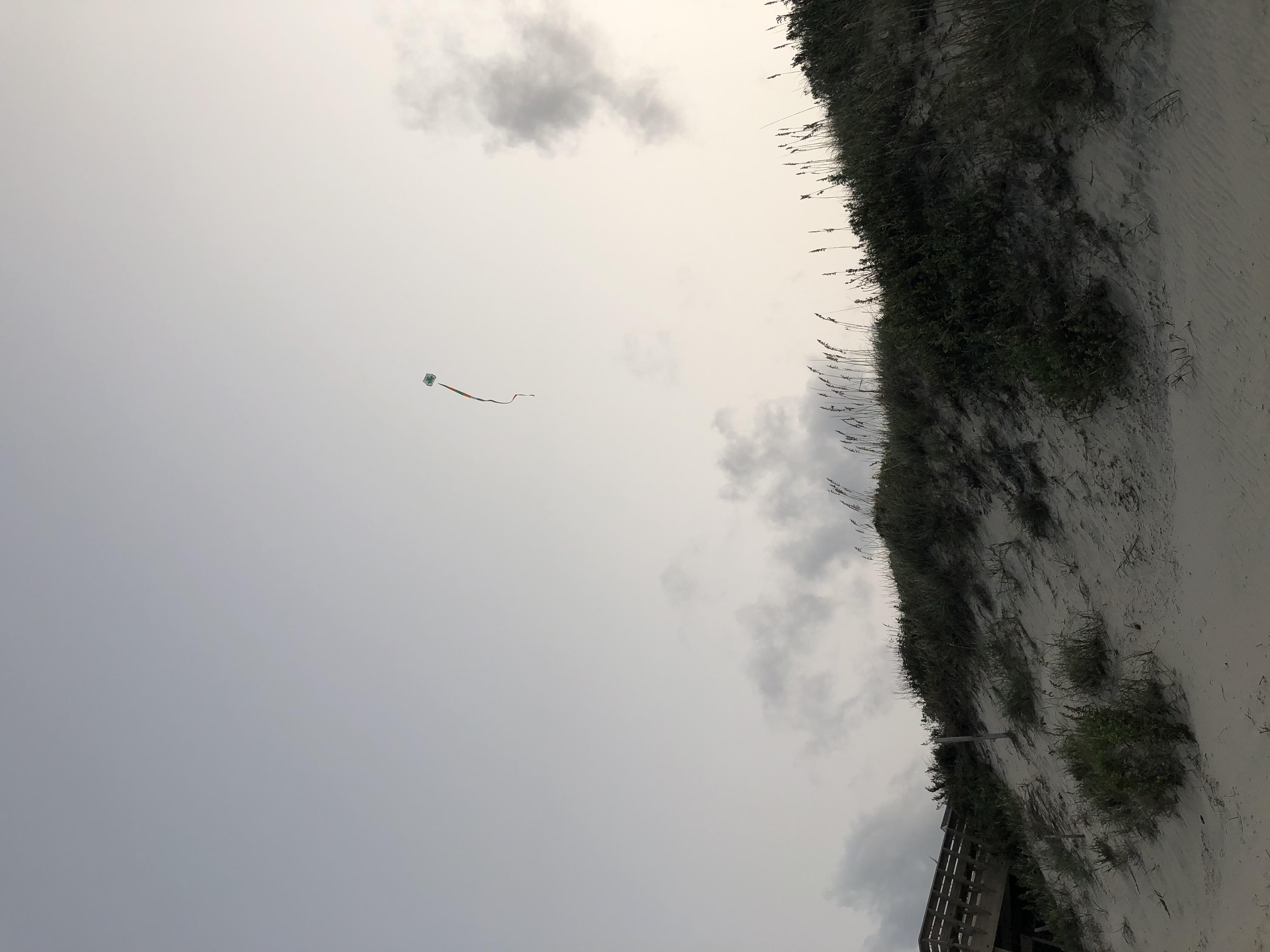 Flyringokite beach1