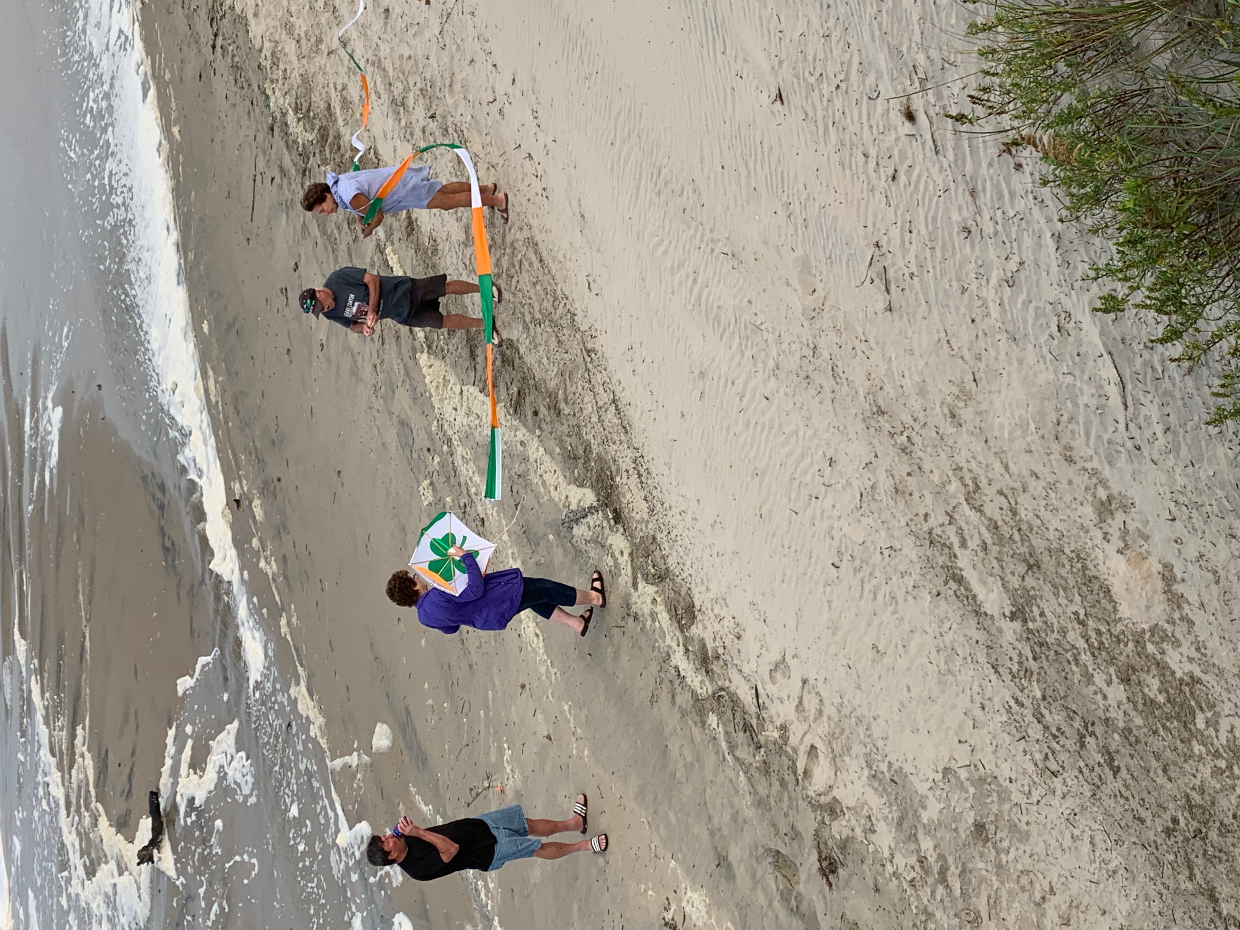 Flyringokite beach3.JPEG