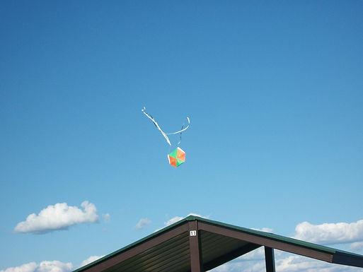 Jamaican Bamboo kites