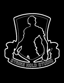 STRIKE HOLD STUDIO - THE HOME OF ARMY VETERAN ARTIST DAMON PELLICAN