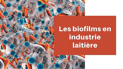 Production de biofilm par les staphyloco