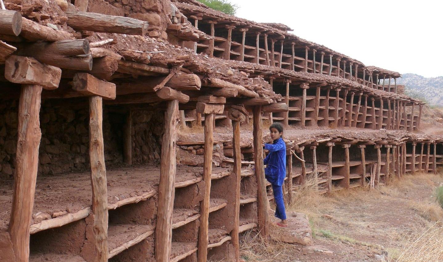 Cases et piliers de bois