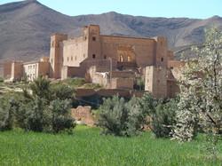 Taliouine : kasbah, safran et agadir