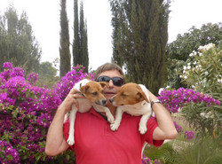 Avec ses chiens Saga et Pacha