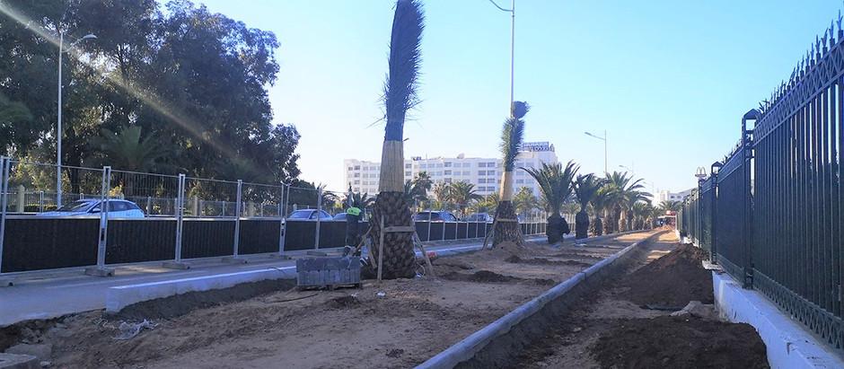 Nouveau Trambus d'Agadir (bus à haut niveau de service) : première étape de 4 km en cours