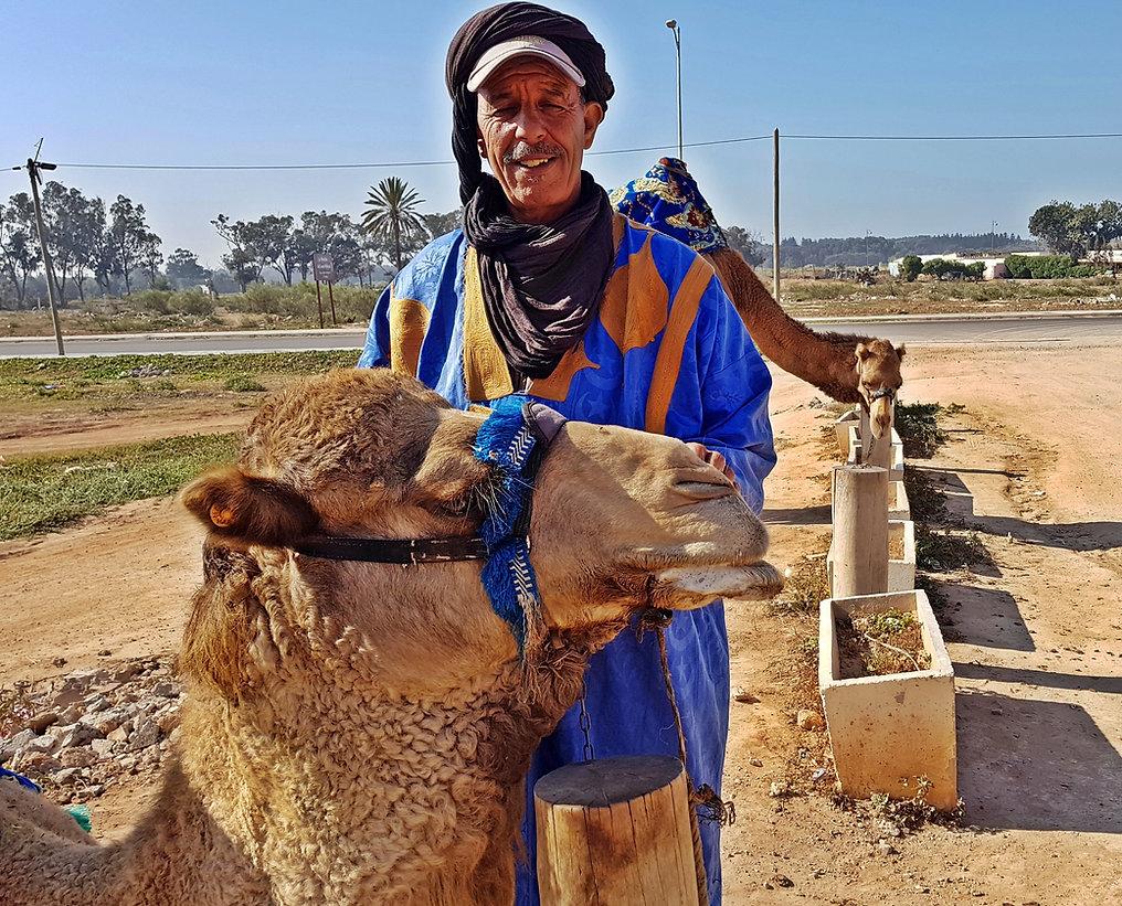Balade à dos de dromadaire à Agadir : adressez-vous à Hassan, à Kasbat Souss