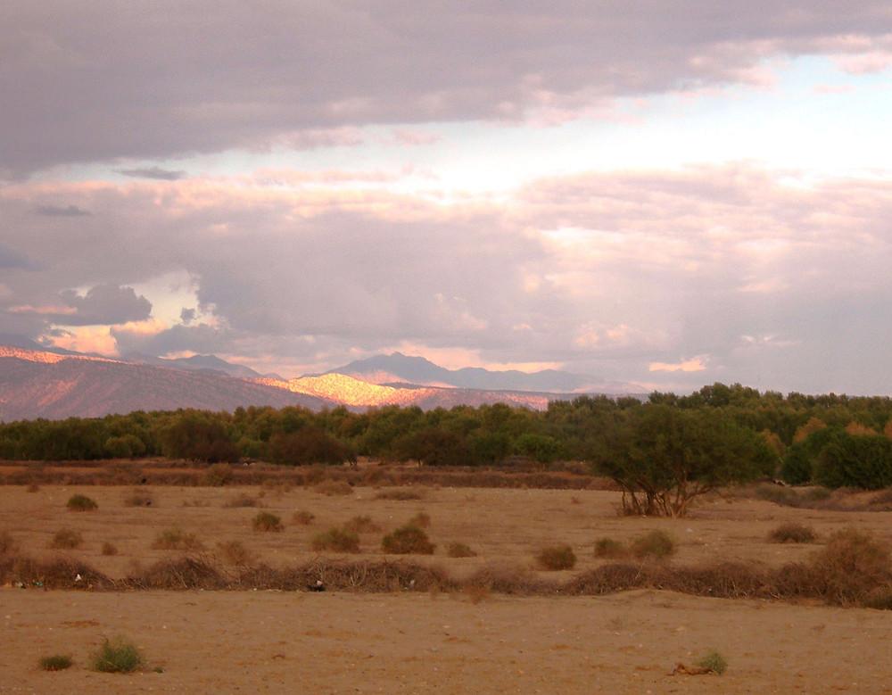 La campagne entre Taroudant et l'Atlas
