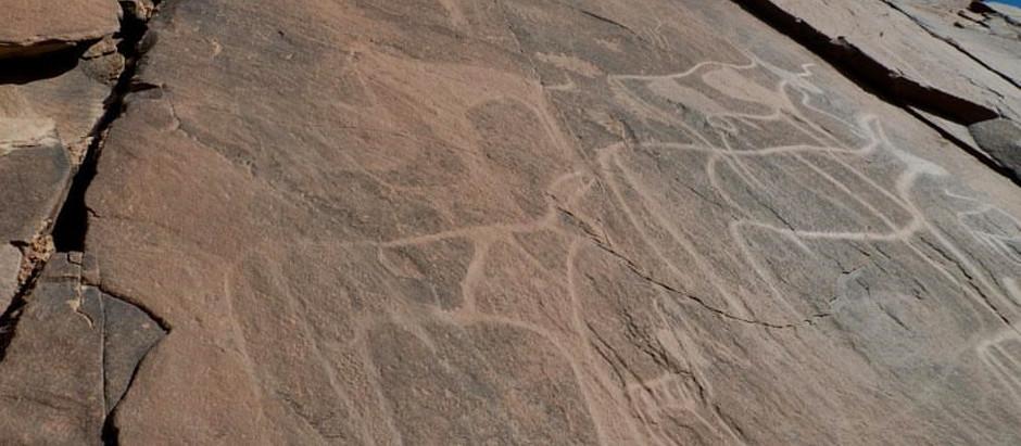 Gravures rupestres à Aït Ouabelli, oasis verdoyante aux confins sud de la Région Souss Massa