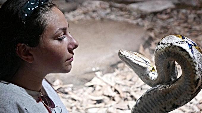 Croco Parc d'Agadir : une grotte aux serpents s'ajoute aux iguanes et aux tortues géantes