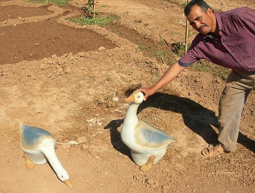 Le jardinier accueille deux oies en grès et récolte des figues de Barbarie