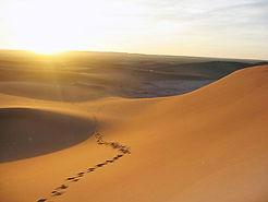 Le désert commence à M'Hamid, peu après Zagora.