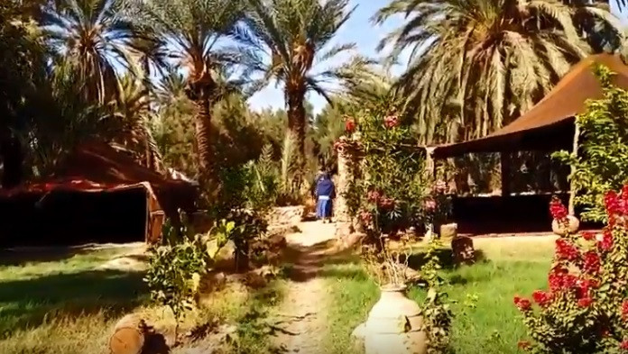Un bivouac nommé Igueldan au coeur de la palmeraie de Tiout près de Taroudant