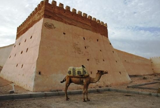 Agadir : 1001 attractions