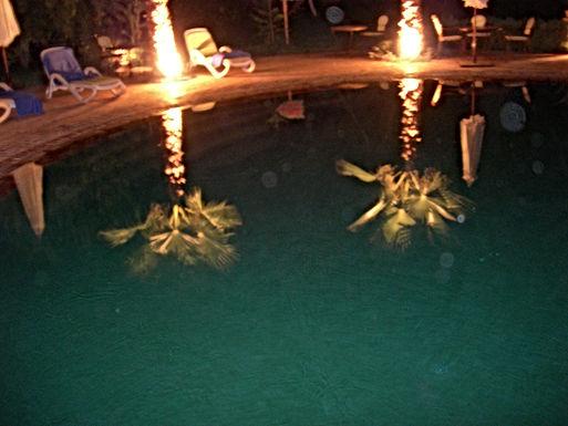 Palmiers sous les étoiles à Taroudant