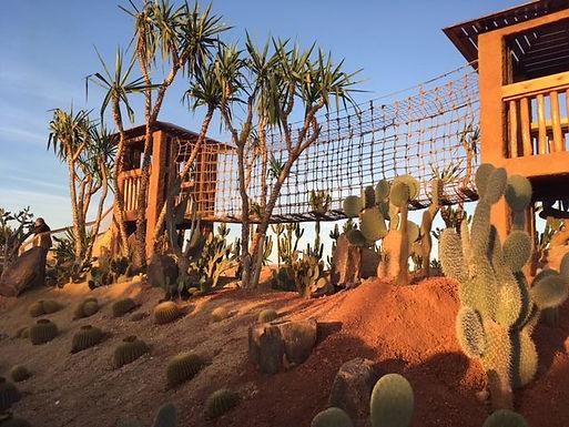 Agadir : le magnifique Croco Parc inaugure son Jardin des cactus, extension bienvenue