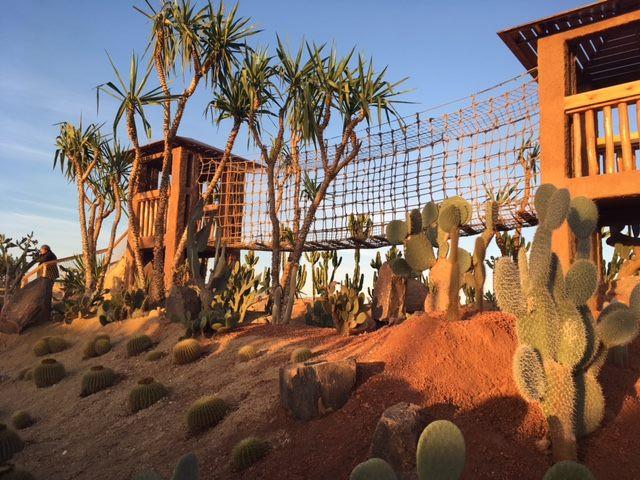 Jardin des cactus au Croco Parc d'Agadir