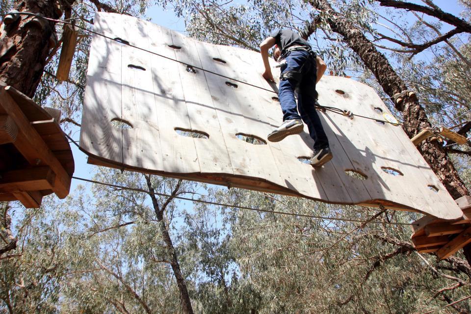 Activité écologique pour tous les âges à Agadir : parcours accrobranche du Souss Park