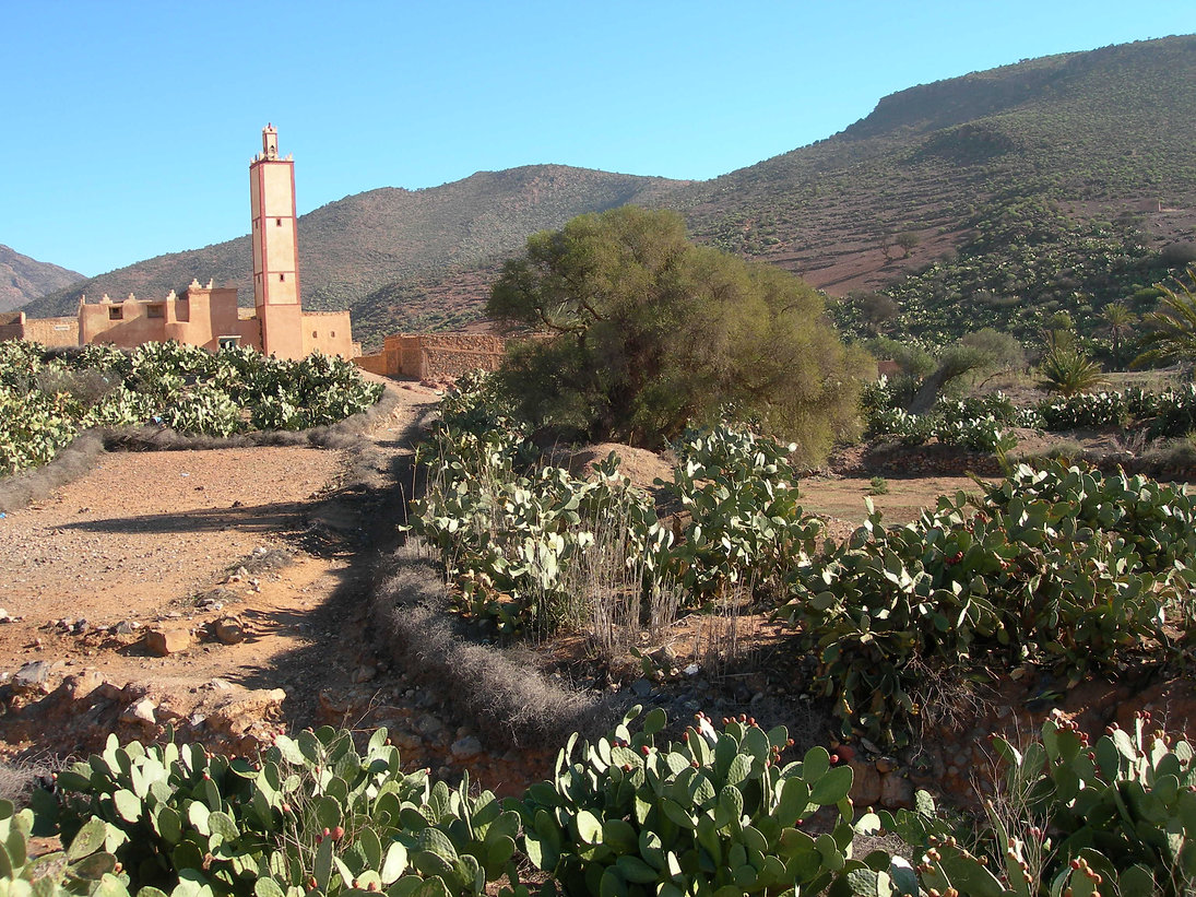 De Guelmim à Sidi Ifni
