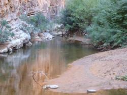 L'eau est abondante dans la gorges