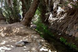 Ruisseau bienfaisant