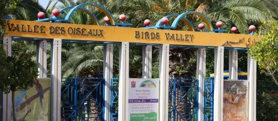 La Vallée des oiseaux d'Agadir fermée durant 18 mois pour renaître bien plus attractive qu'avant