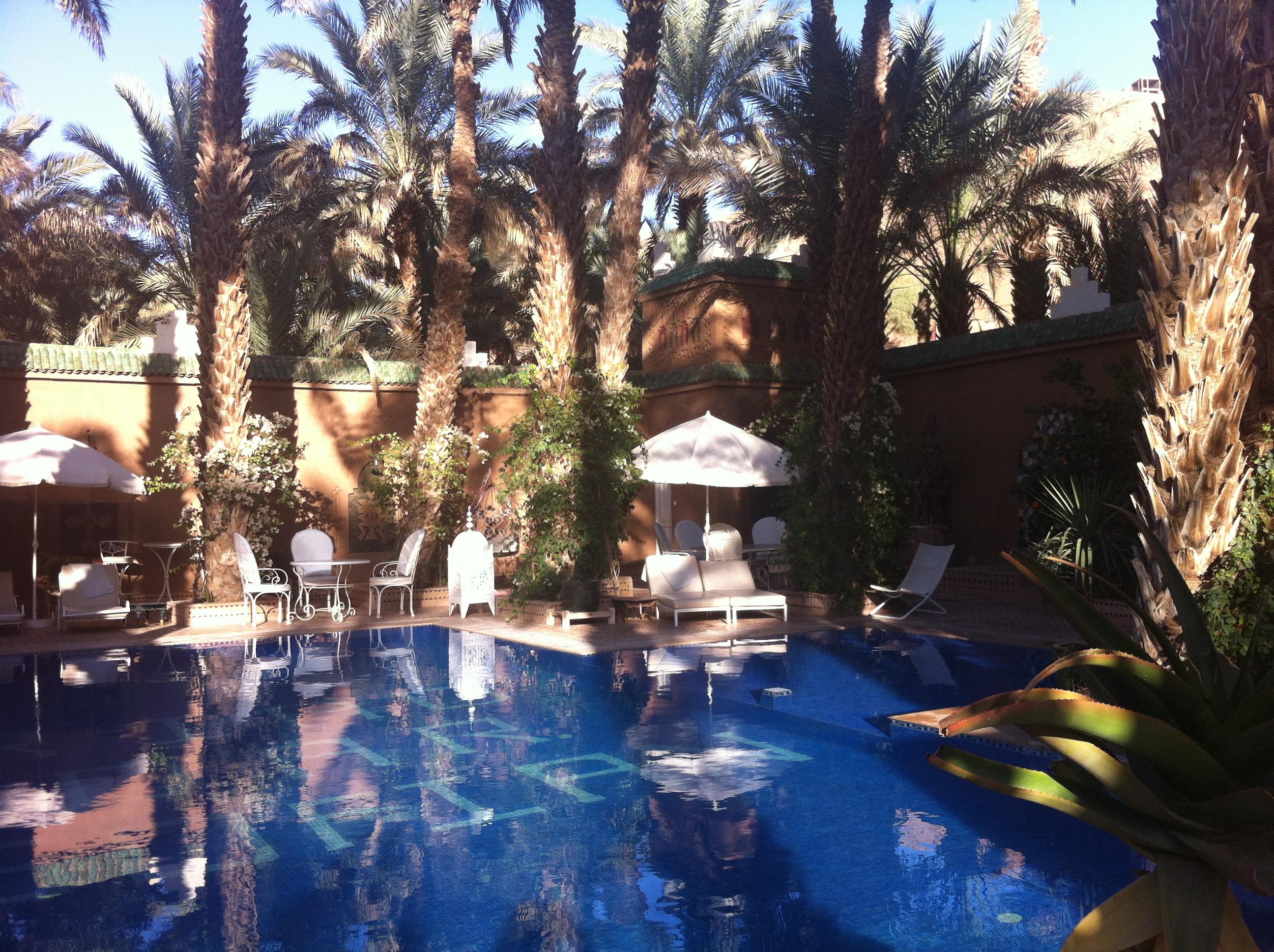 Piscine et palmiers