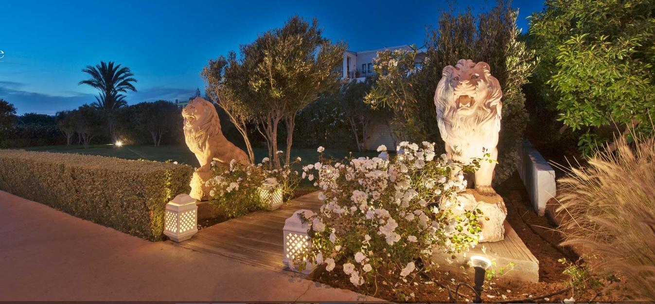 Lanternes et roses blanches
