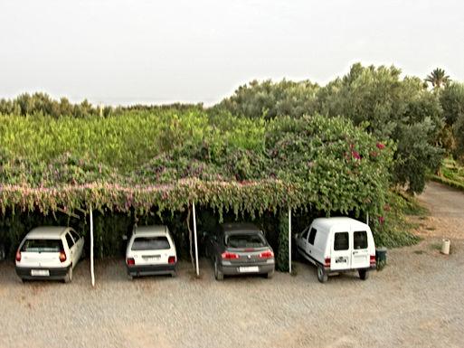 Places de parc végétalisées avec des bougainvilliers