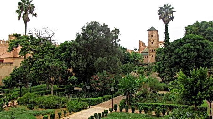 Le jardin andalou : un langage universel