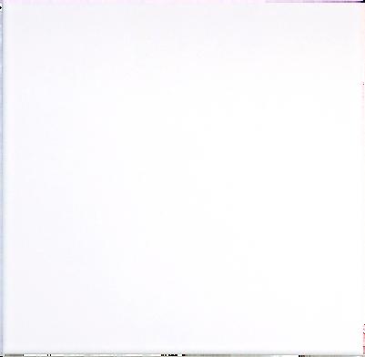 200-Neve Single Tile.png